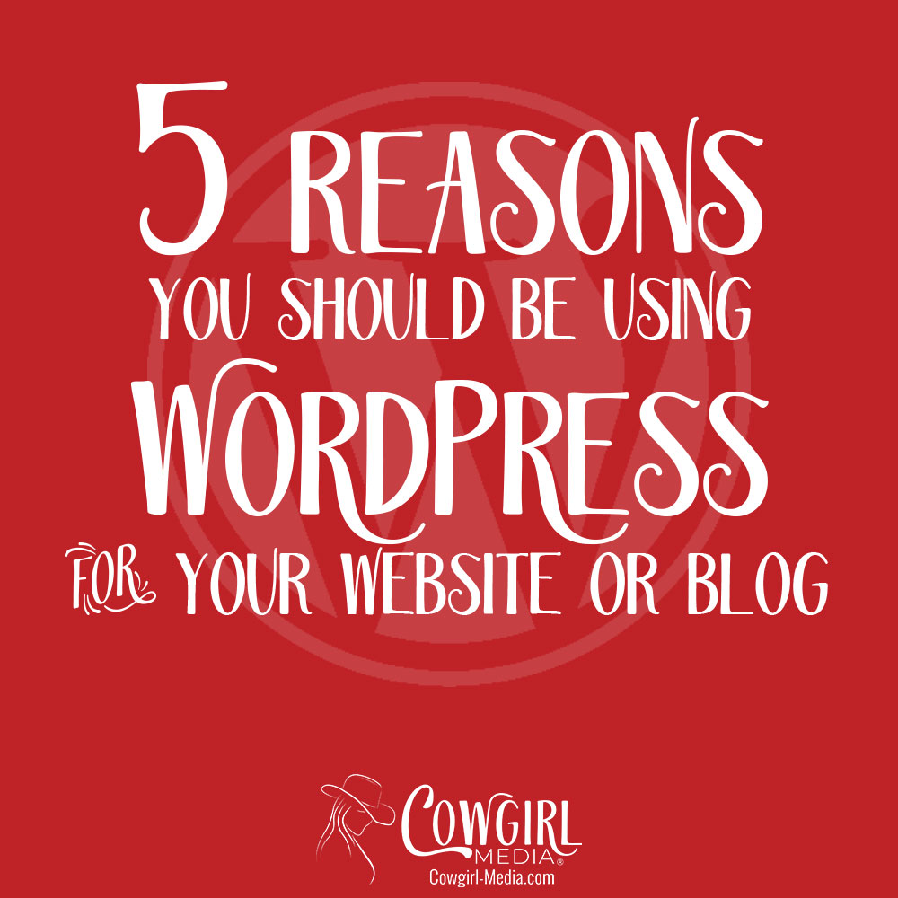 5 reasons to use wordpress