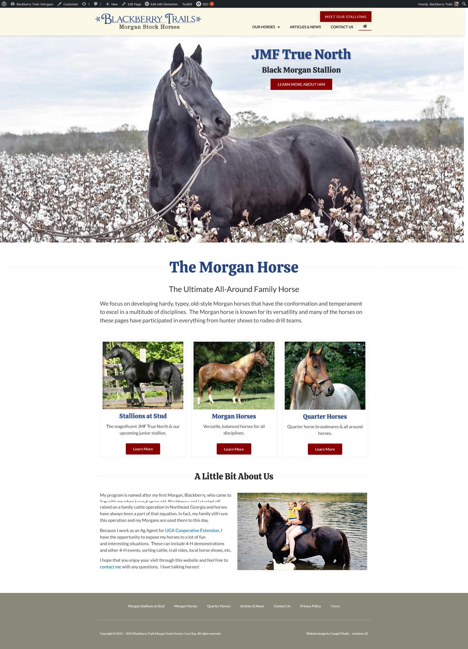 Blackberry Trails Morgan Horses screenshot